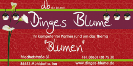 Dinges Blume